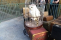 Universal Studios: Hedwig