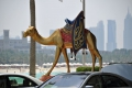 Dubai: Statue vor dem Burj al Arab