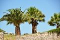 Izmir: Ephesos