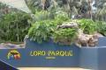Loro Parque, Teneriffa