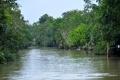 Belém: Unterwegs in den Regenwald