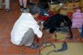 Ho-Chi-Minh-City: Lackwarenfabrik