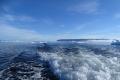 Unterwegs in der Arktis