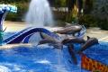 Seaworld: Delphinshow