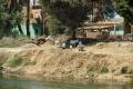 Safaga: Auf dem Weg nach Luxor