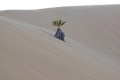 Düne 7 in der Namib