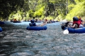 River Tuning auf Dominica