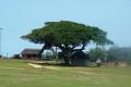 "Ausflug ""Safari im Lalibela Game Reserve"""