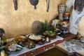 Mittagsbuffet im Reservat