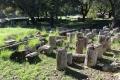 Ausgrabungsgelände Olympia