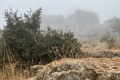 Wanderung im Naturpark El Torcal