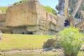 Bioparc Valencia - Schimpansen