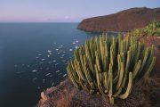 13.10.2020 · TUI Cruises macht Kreuzfahrten für die Wintersaison 2020 buchbar [Pressemeldung]