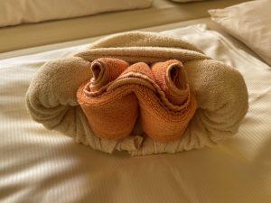 Handtuch-Schildkröte
